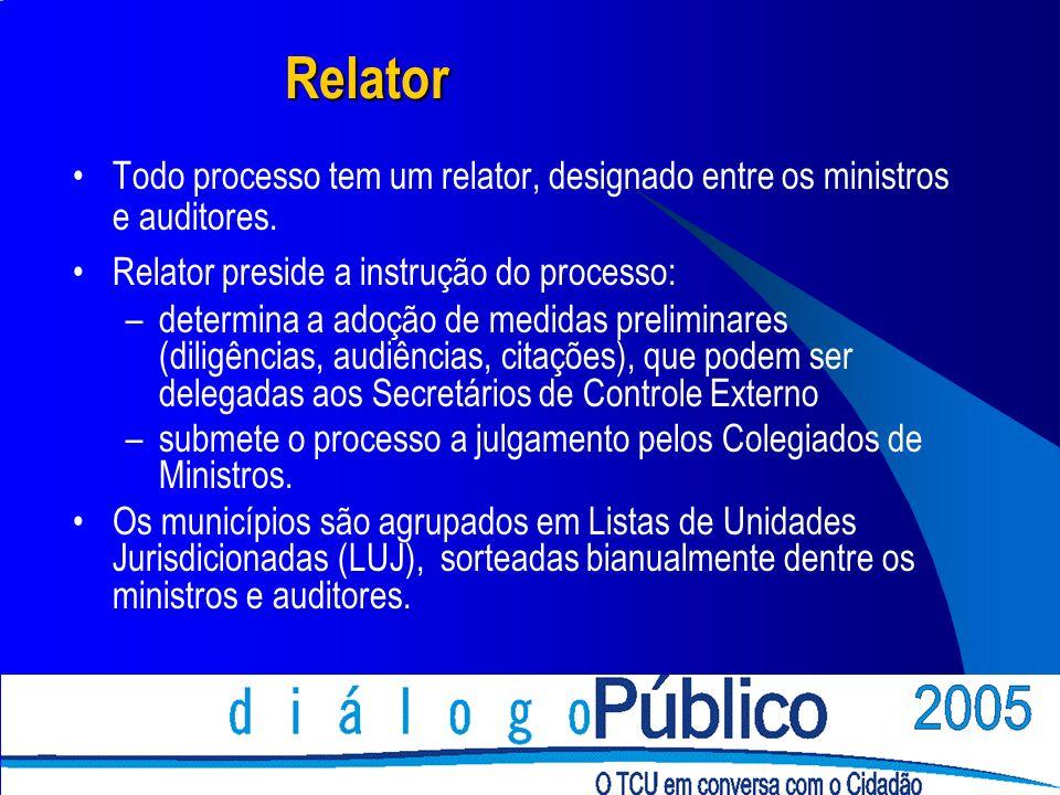 Relator Todo processo tem um relator, designado entre os ministros e auditores. Relator preside a instrução do processo: –determina a adoção de medida
