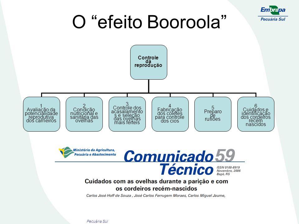 O efeito Booroola Controle da reprodução 1 Avaliação da potencialidade reprodutiva dos carneiros 2 Condição nutricional e sanitária das ovelhas 4 Fabr