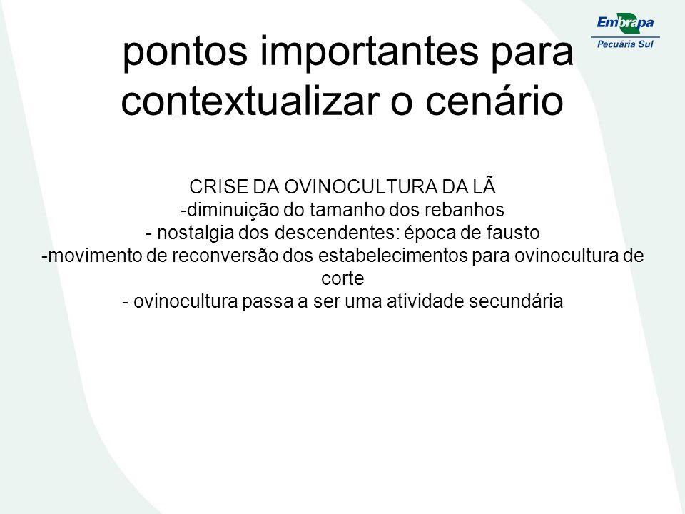 pontos importantes para contextualizar o cenário CRISE DA OVINOCULTURA DA LÃ -diminuição do tamanho dos rebanhos - nostalgia dos descendentes: época d