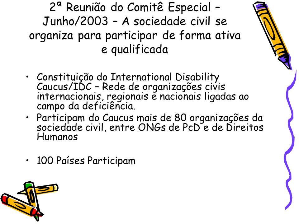 2ª Reunião do Comitê Especial – Junho/2003 – A sociedade civil se organiza para participar de forma ativa e qualificada Constituição do International