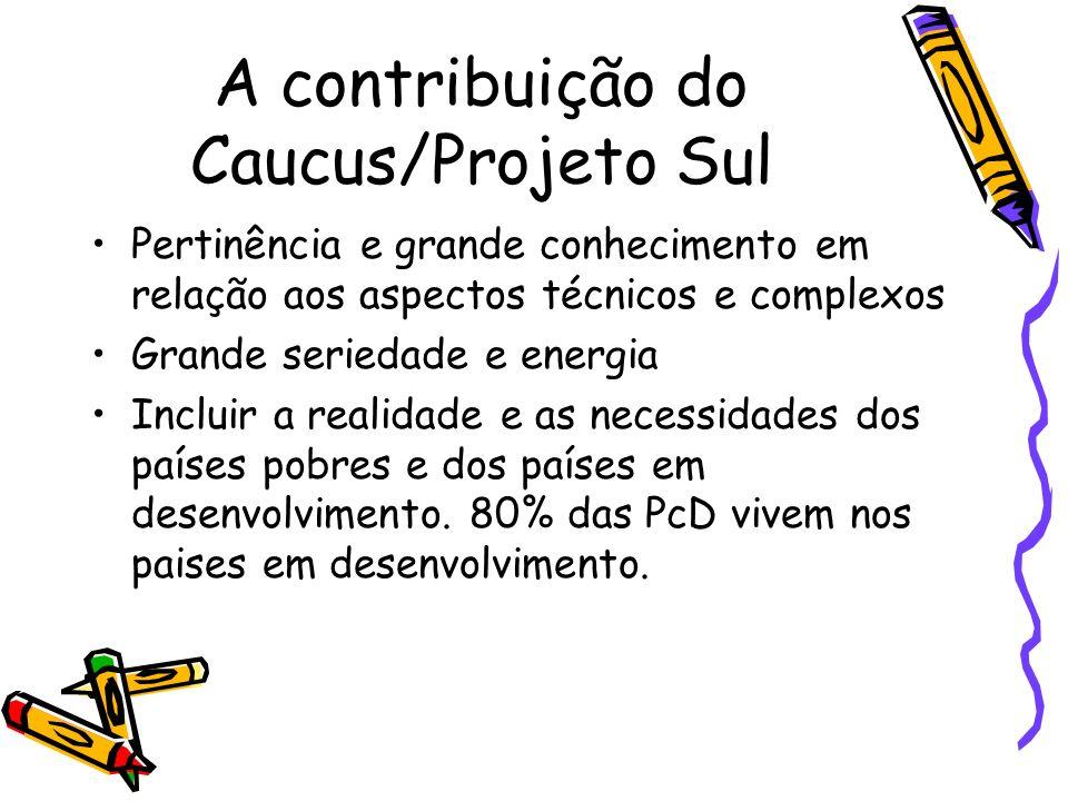 A contribuição do Caucus/Projeto Sul Pertinência e grande conhecimento em relação aos aspectos técnicos e complexos Grande seriedade e energia Incluir