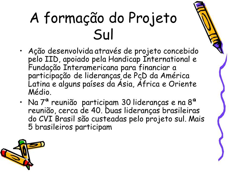 A formação do Projeto Sul Ação desenvolvida através de projeto concebido pelo IID, apoiado pela Handicap International e Fundação Interamericana para
