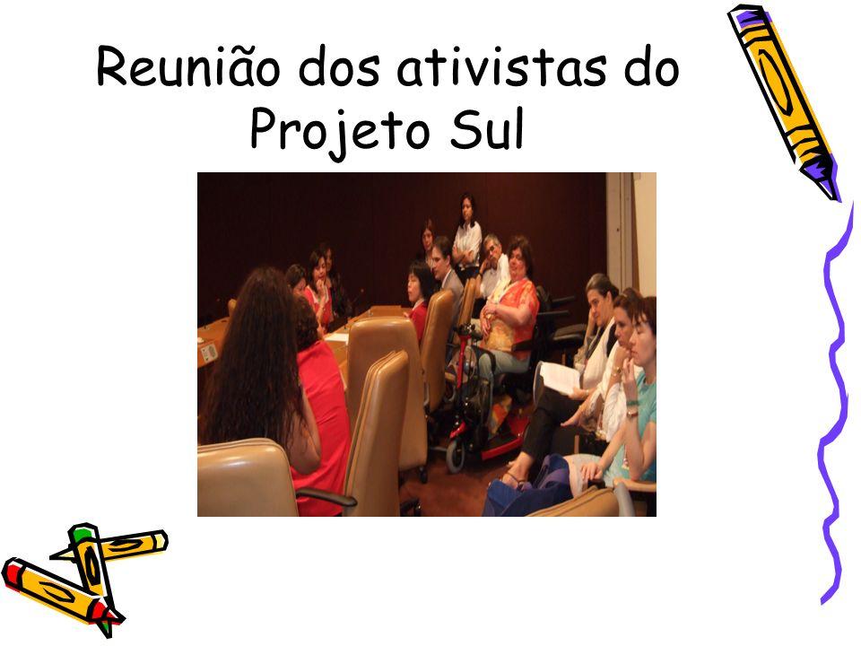 Reunião dos ativistas do Projeto Sul