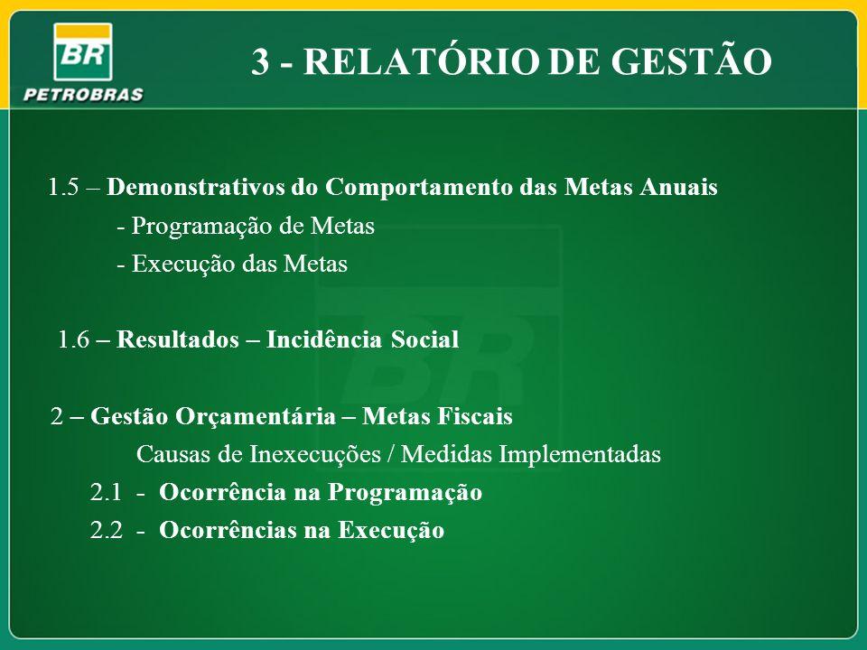 1.5 – Demonstrativos do Comportamento das Metas Anuais - Programação de Metas - Execução das Metas 1.6 – Resultados – Incidência Social 2 – Gestão Orç