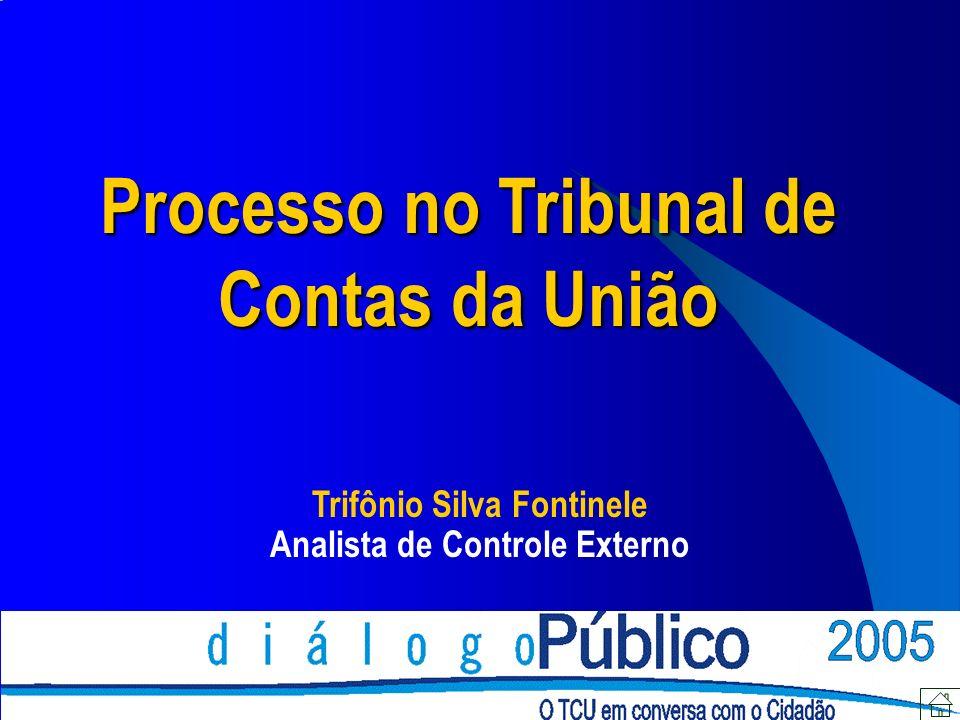 O Processo Legislação aplicada no âmbito do TCU Relator do Processo Instrução (análise) Ministério Público Tipos de Processos Apresentação de Defesa Julgamento Recursos Acompanhamento de Processos Sumário