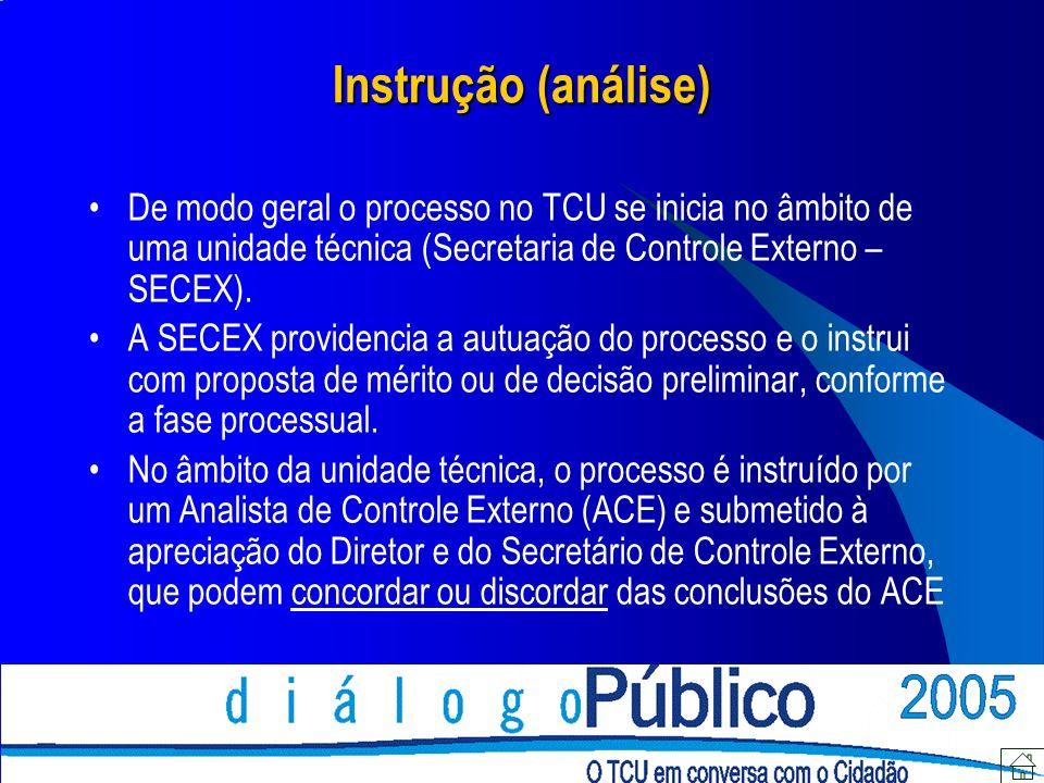 Instrução (análise) De modo geral o processo no TCU se inicia no âmbito de uma unidade técnica (Secretaria de Controle Externo – SECEX). A SECEX provi