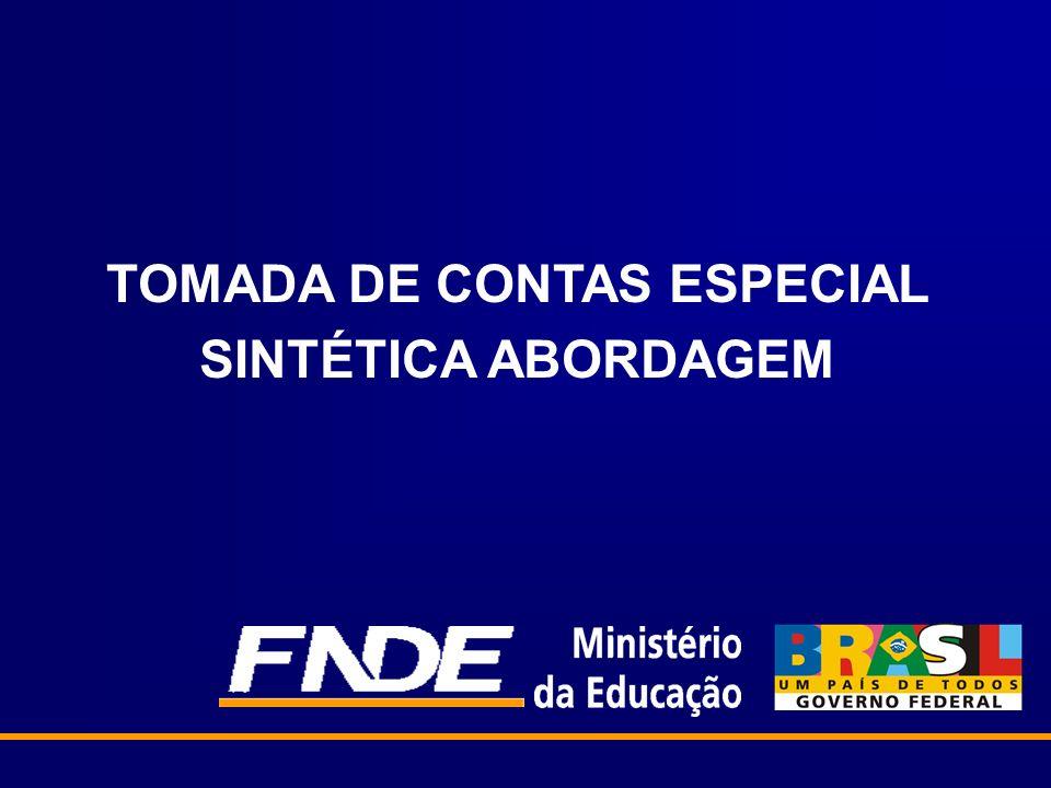 TOMADA DE CONTAS ESPECIAL SINTÉTICA ABORDAGEM