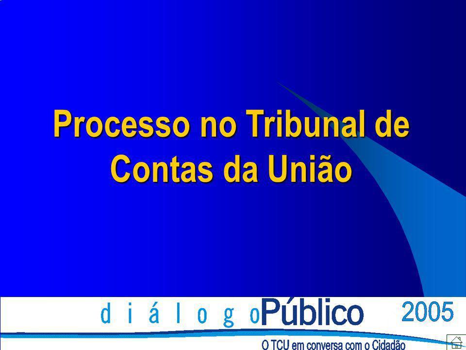 Noções Gerais TCU => Atuação mediante formalização de processos Legislação específica: Lei nº 8.443/92 e Regimento Interno do TCU Aplicação subsidiária: Código de Processo Civil