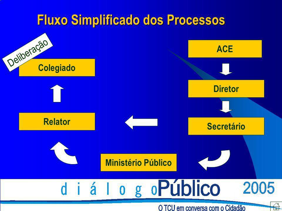 ACE Diretor Secretário Ministério Público Relator Colegiado Fluxo Simplificado dos Processos Deliberação