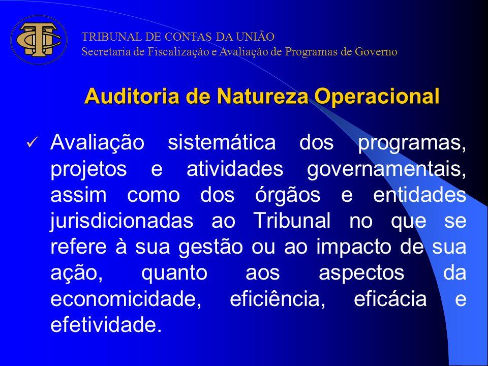 Auditoria de Natureza Operacional Avaliação sistemática dos programas, projetos e atividades governamentais, assim como dos órgãos e entidades jurisdi