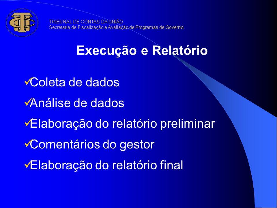 Execução e Relatório Coleta de dados Análise de dados Elaboração do relatório preliminar Comentários do gestor Elaboração do relatório final TRIBUNAL