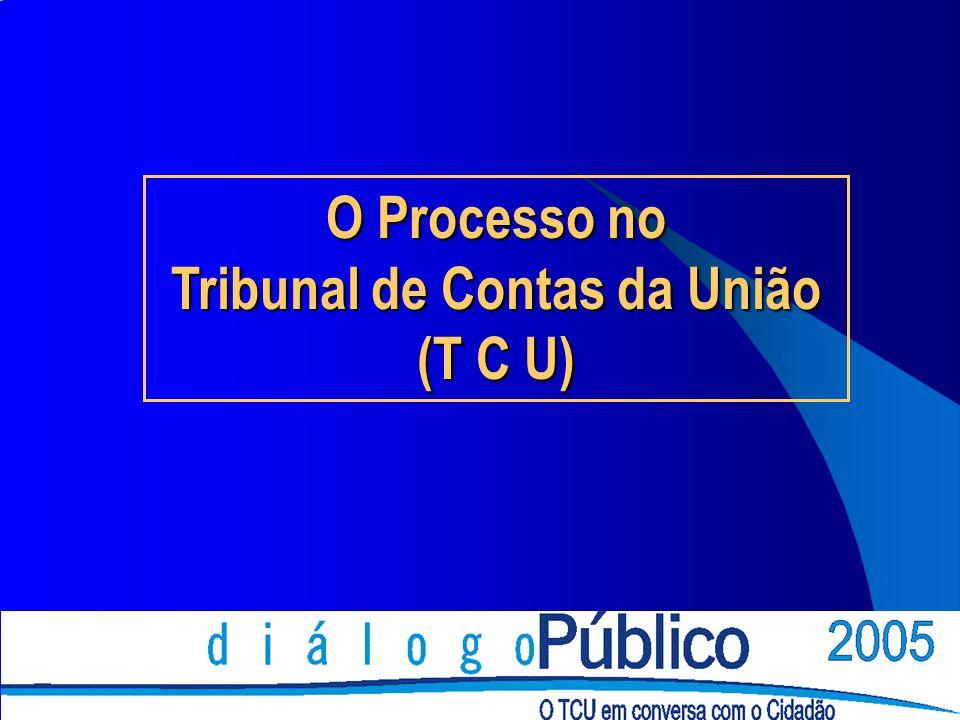 O Processo no Tribunal de Contas da União (T C U)
