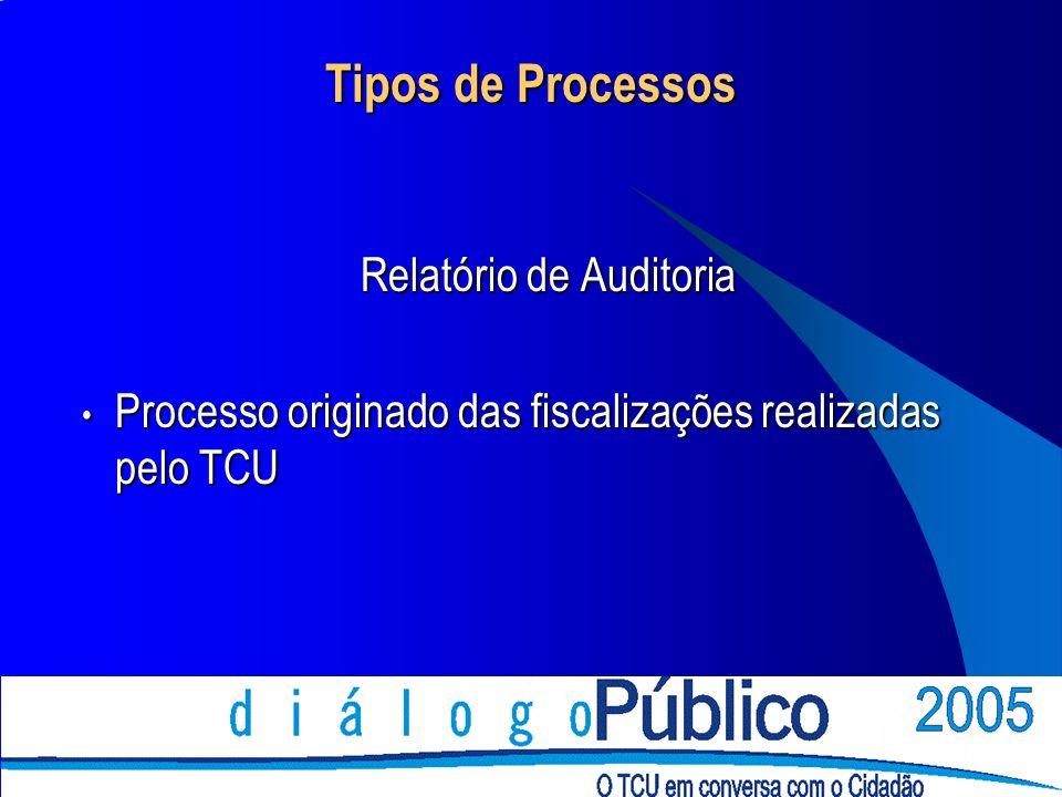 Tipos de Processos Relatório de Auditoria Processo originado das fiscalizações realizadas pelo TCU Processo originado das fiscalizações realizadas pelo TCU