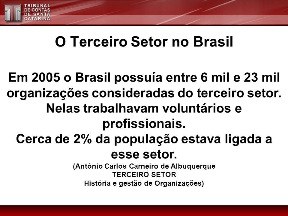 O Terceiro Setor no Brasil Em 2005 o Brasil possuía entre 6 mil e 23 mil organizações consideradas do terceiro setor. Nelas trabalhavam voluntários e
