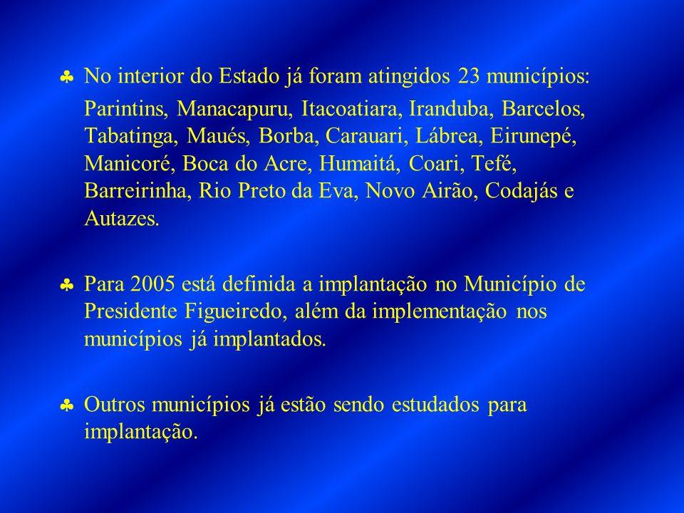 No interior do Estado já foram atingidos 23 municípios: Parintins, Manacapuru, Itacoatiara, Iranduba, Barcelos, Tabatinga, Maués, Borba, Carauari, Lábrea, Eirunepé, Manicoré, Boca do Acre, Humaitá, Coari, Tefé, Barreirinha, Rio Preto da Eva, Novo Airão, Codajás e Autazes.