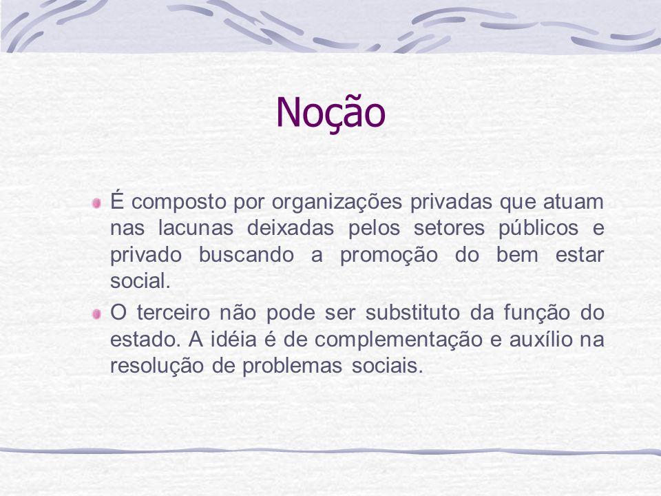 Noção É composto por organizações privadas que atuam nas lacunas deixadas pelos setores públicos e privado buscando a promoção do bem estar social. O