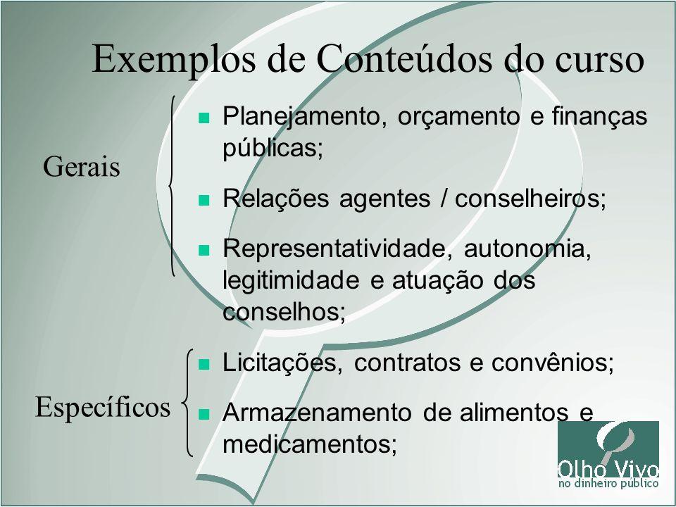 n Planejamento, orçamento e finanças públicas; n Relações agentes / conselheiros; n Representatividade, autonomia, legitimidade e atuação dos conselho