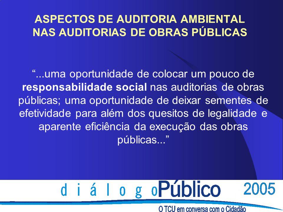 ...uma oportunidade de colocar um pouco de responsabilidade social nas auditorias de obras públicas; uma oportunidade de deixar sementes de efetividad