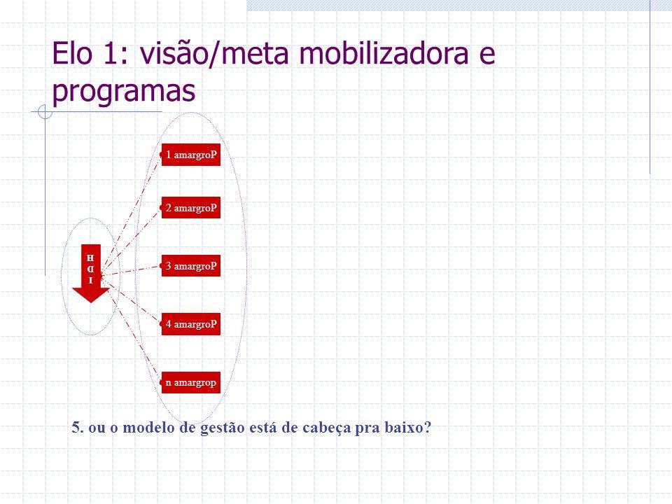 IDHIDH 5. ou o modelo de gestão está de cabeça pra baixo? 1 amargroP 2 amargroP 3 amargroP 4 amargroP n amargrop Elo 1: visão/meta mobilizadora e prog