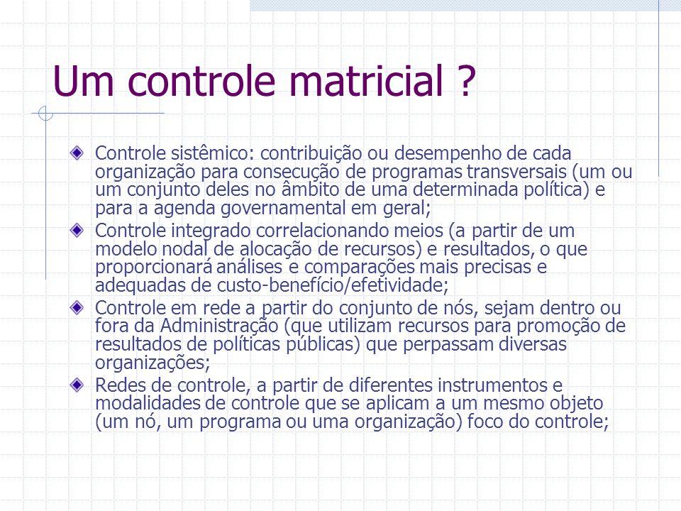 Um controle matricial ? Controle sistêmico: contribuição ou desempenho de cada organização para consecução de programas transversais (um ou um conjunt