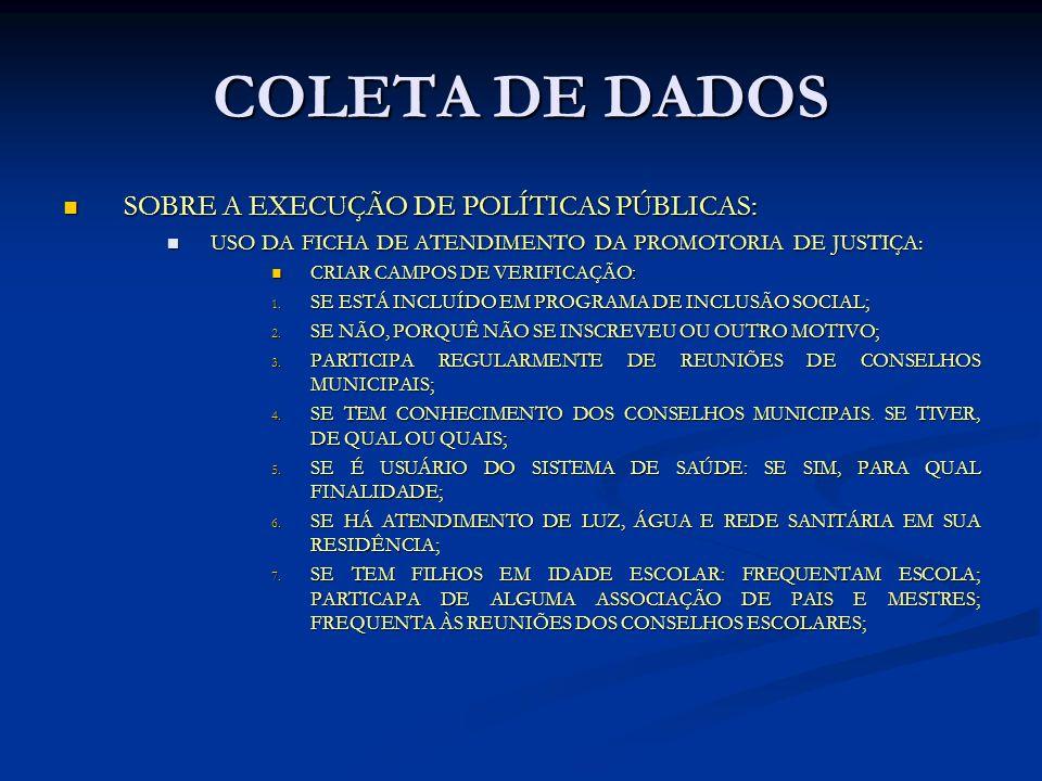 COLETA DE DADOS SOBRE A EXECUÇÃO DE POLÍTICAS PÚBLICAS: SOBRE A EXECUÇÃO DE POLÍTICAS PÚBLICAS: USO DA FICHA DE ATENDIMENTO DA PROMOTORIA DE JUSTIÇA: