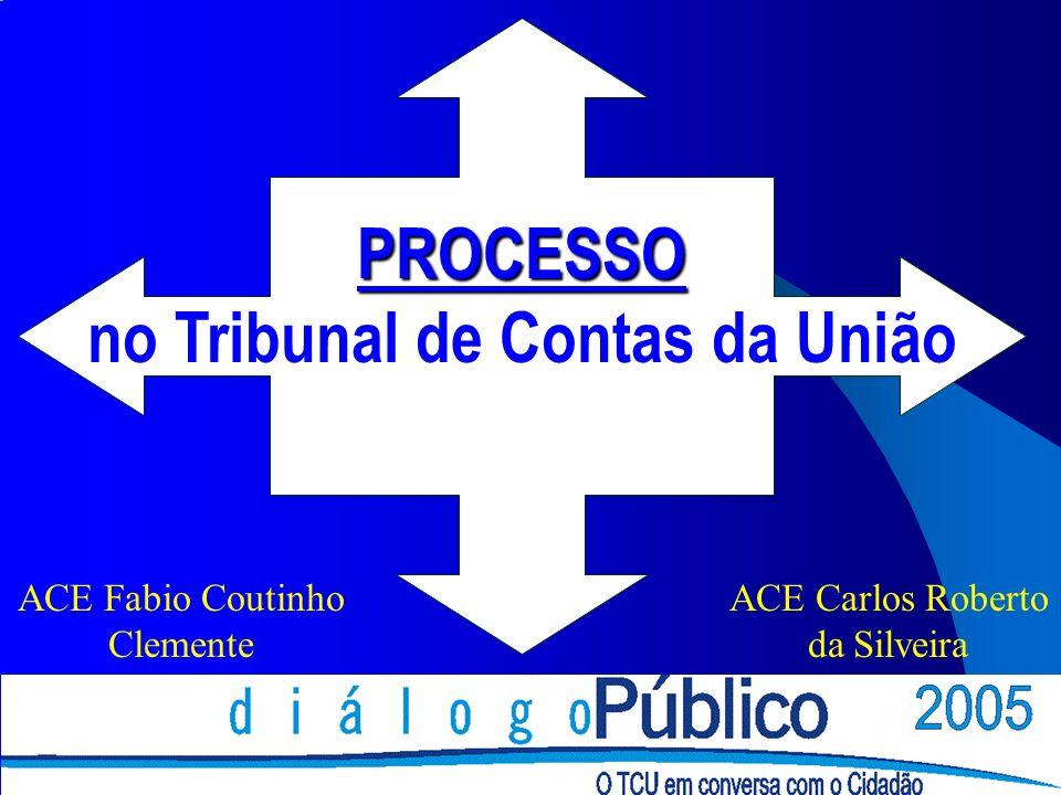 PROCESSO no Tribunal de Contas da União ACE Fabio Coutinho Clemente ACE Carlos Roberto da Silveira