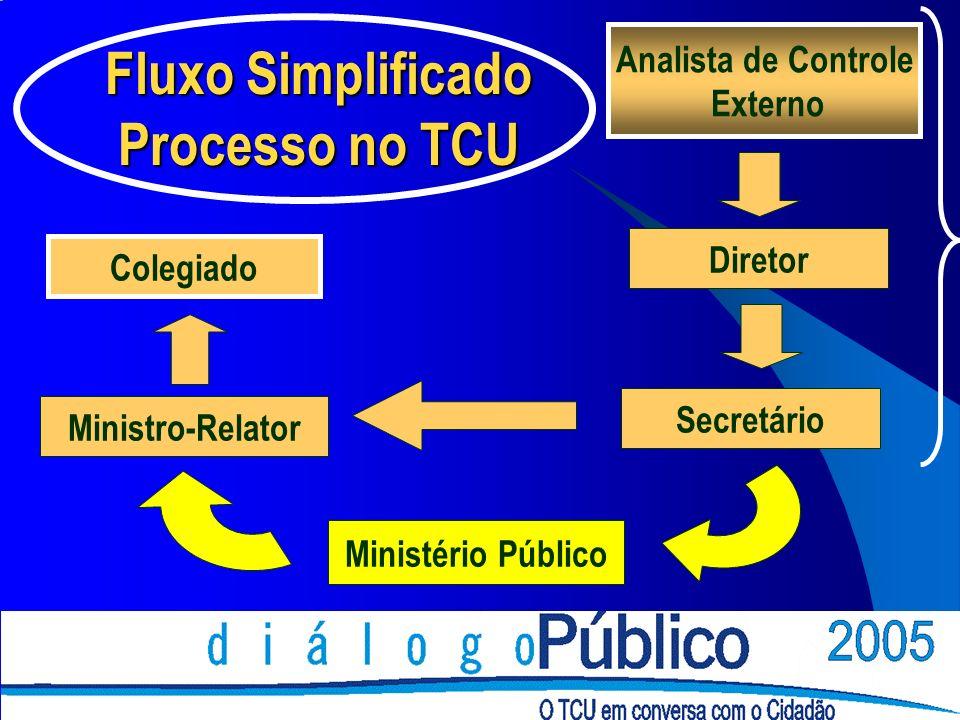 Analista de Controle Externo Diretor Secretário Ministério Público Ministro-Relator Colegiado Fluxo Simplificado Processo no TCU