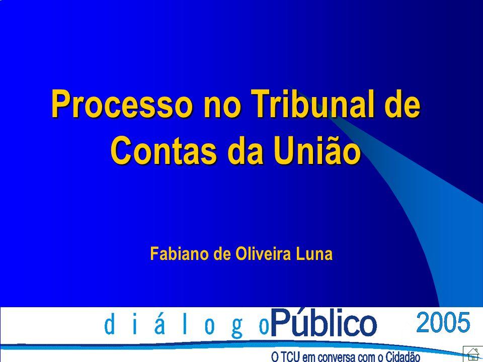 Processo no Tribunal de Contas da União Fabiano de Oliveira Luna