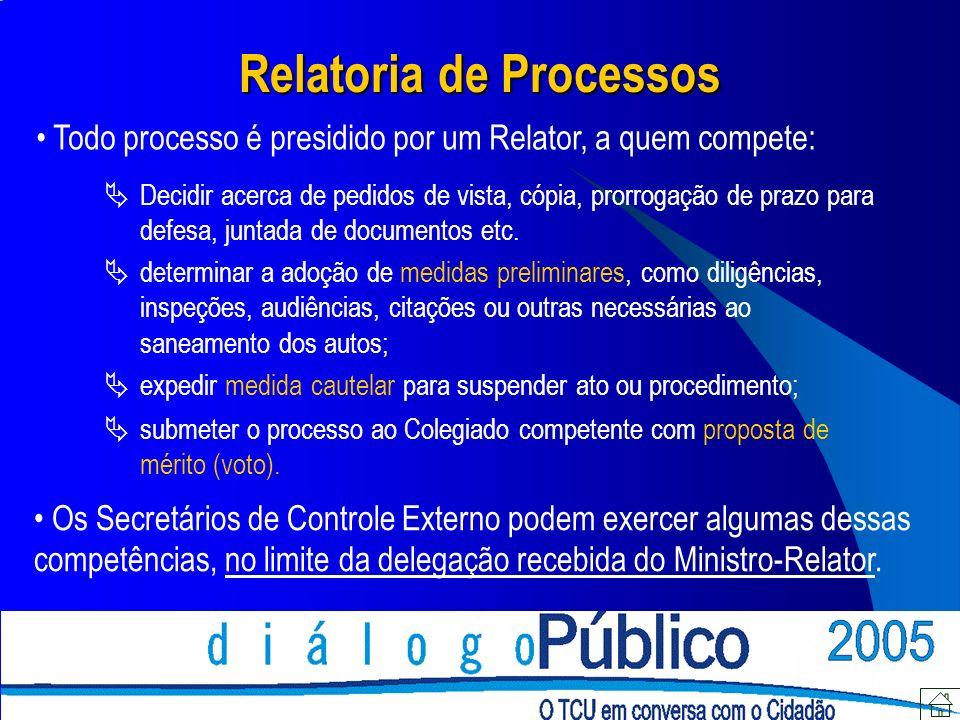 Relatoria de Processos Todo processo é presidido por um Relator, a quem compete: Decidir acerca de pedidos de vista, cópia, prorrogação de prazo para defesa, juntada de documentos etc.
