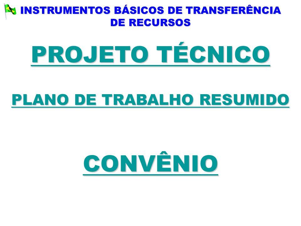 INSTRUMENTOS BÁSICOS DE TRANSFERÊNCIA DE RECURSOS PLANO DE TRABALHO RESUMIDO PLANO DE TRABALHO RESUMIDO CONVÊNIO PROJETO TÉCNICO PROJETO TÉCNICO
