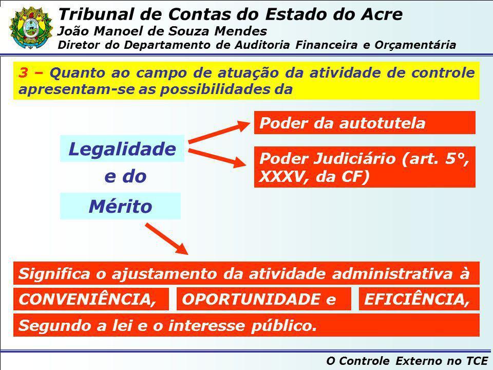 Tribunal de Contas do Estado do Acre João Manoel de Souza Mendes Diretor do Departamento de Auditoria Financeira e Orçamentária O Controle Externo no TCE O Objetivo do Tribunal de Contas...