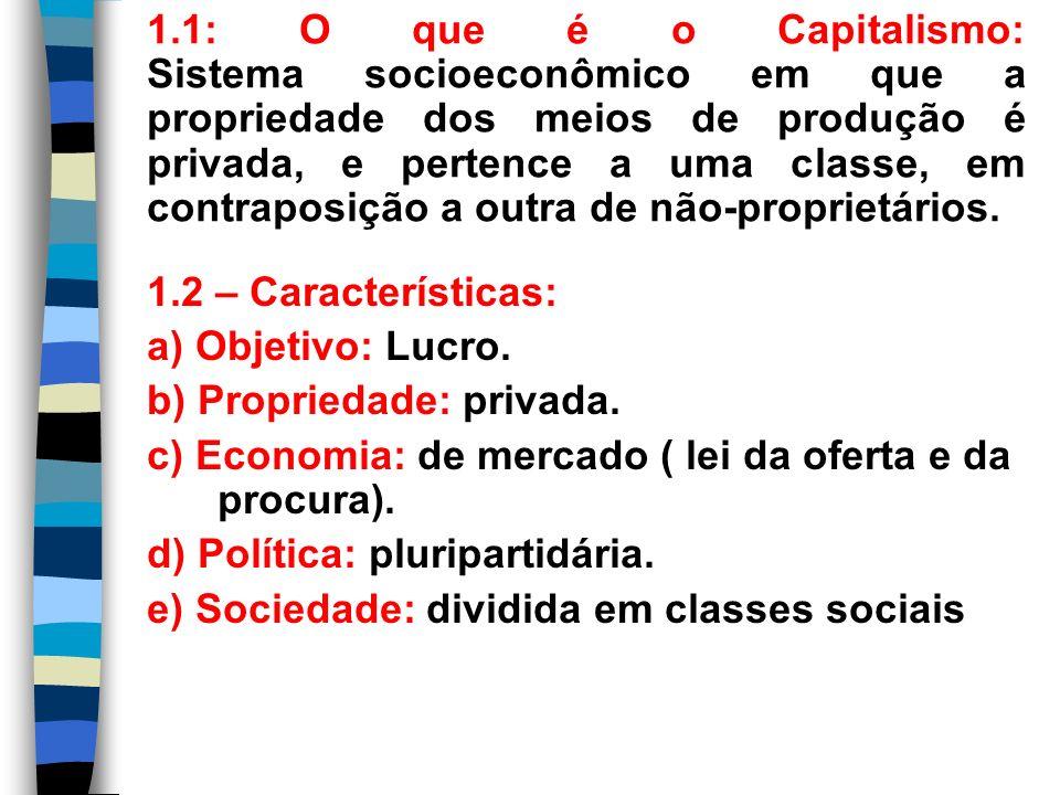 1.2 – Características: a) Objetivo: Lucro. b) Propriedade: privada. c) Economia: de mercado ( lei da oferta e da procura). d) Política: pluripartidári