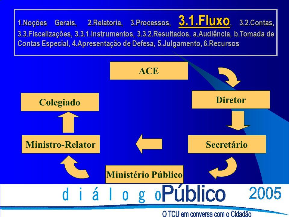 ACE Diretor Secretário Ministério Público Ministro-Relator Colegiado 1.Noções Gerais, 2.Relatoria, 3.Processos, 3.1.Fluxo, 3.2.Contas, 3.3.Fiscalizações, 3.3.1.Instrumentos, 3.3.2.Resultados, a.Audiência, b.Tomada de Contas Especial, 4.Apresentação de Defesa, 5.Julgamento, 6.Recursos