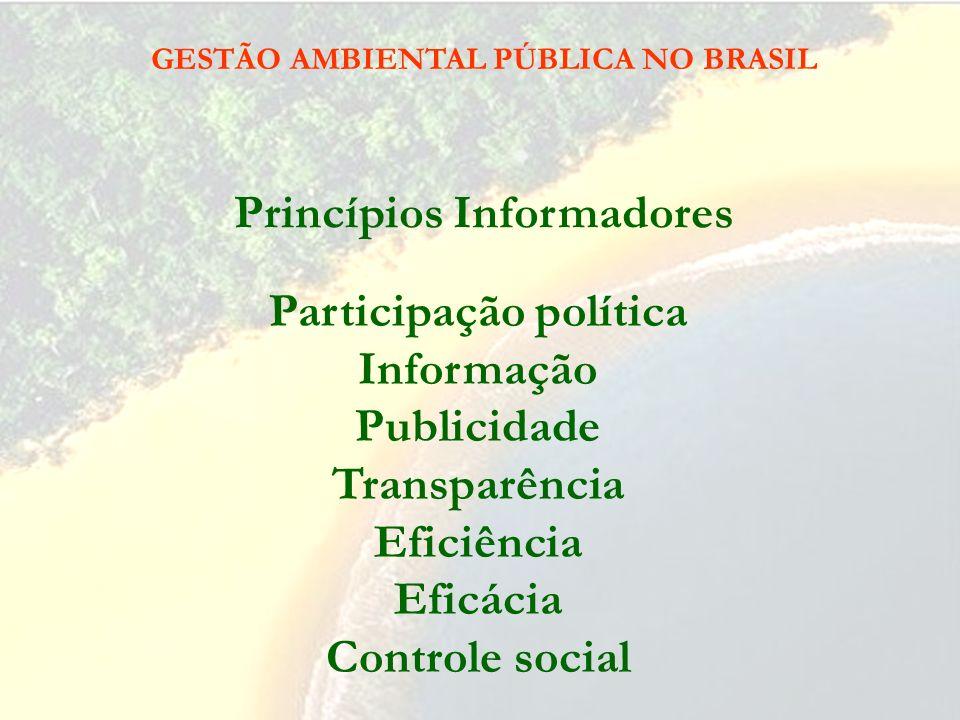 GESTÃO AMBIENTAL PÚBLICA NO BRASIL Contexto Social e Institucional: Sociedade pluralista e pluralismo político Democracia deliberativa (legitimação pa