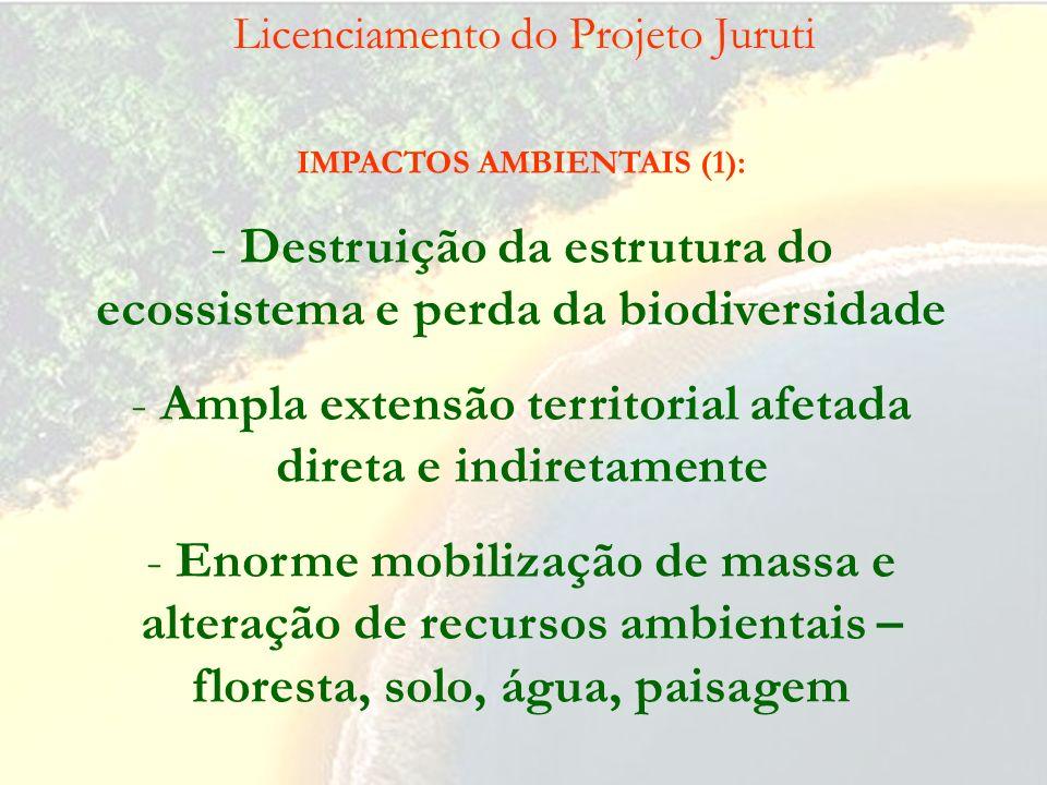 Licenciamento do Projeto Juruti IMPACTOS AMBIENTAIS (2): -Mobilização de enorme contingente populacional - Impacto negativo na economia e no modo de v
