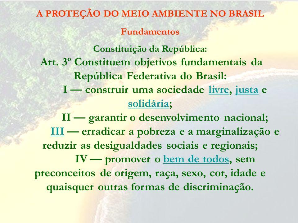 A PROTEÇÃO DO MEIO AMBIENTE NO BRASIL Fundamentos Constituição da República: Art. 1º A República Federativa do Brasil, formada pela união indissolúvel
