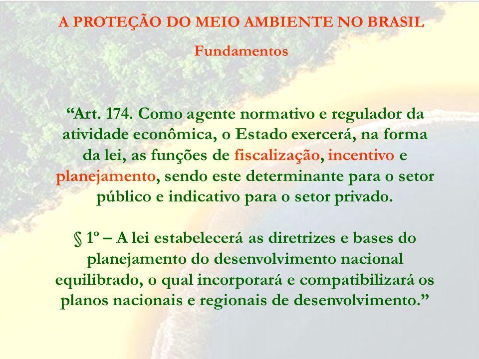 A PROTEÇÃO DO MEIO AMBIENTE NO BRASIL Fundamentos Art. 170. A ordem econômica, fundada na valorização do trabalho humano e na livre iniciativa, tem po
