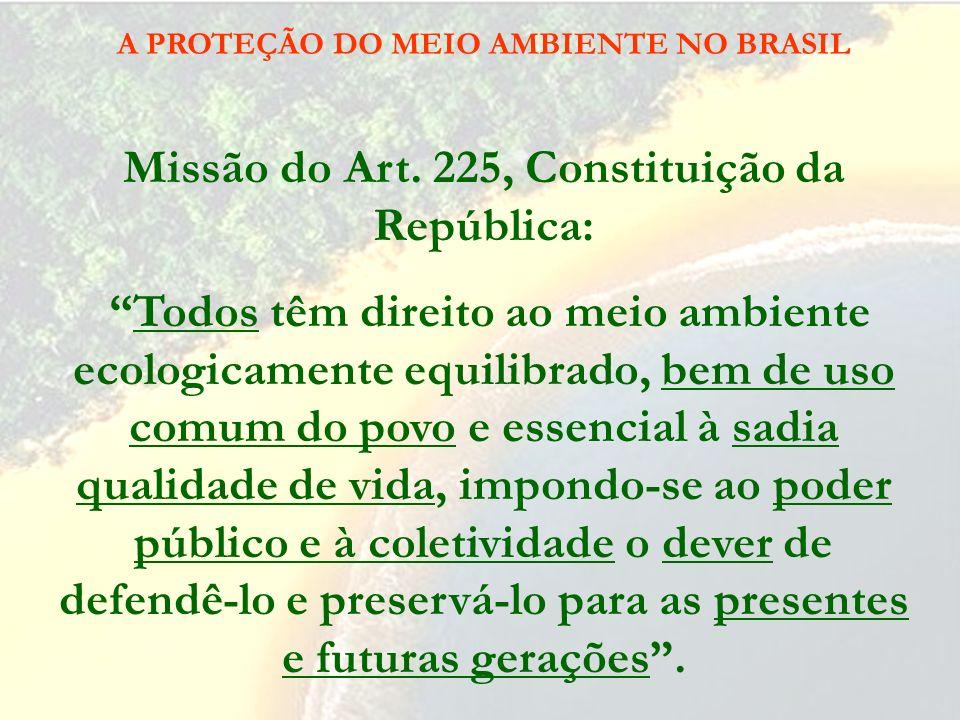 A PROTEÇÃO DO MEIO AMBIENTE NO BRASIL Fundamentos Art. 174. Como agente normativo e regulador da atividade econômica, o Estado exercerá, na forma da l