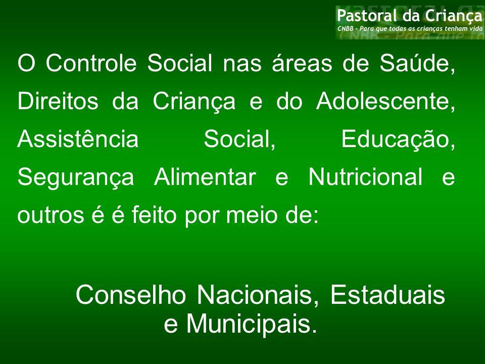 O Controle Social nas áreas de Saúde, Direitos da Criança e do Adolescente, Assistência Social, Educação, Segurança Alimentar e Nutricional e outros é