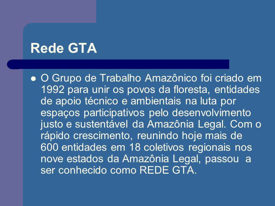 Rede GTA O Grupo de Trabalho Amazônico foi criado em 1992 para unir os povos da floresta, entidades de apoio técnico e ambientais na luta por espaços