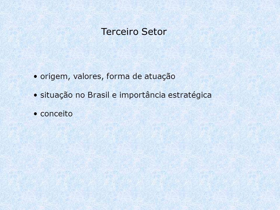 origem, valores, forma de atuação situação no Brasil e importância estratégica conceito Terceiro Setor