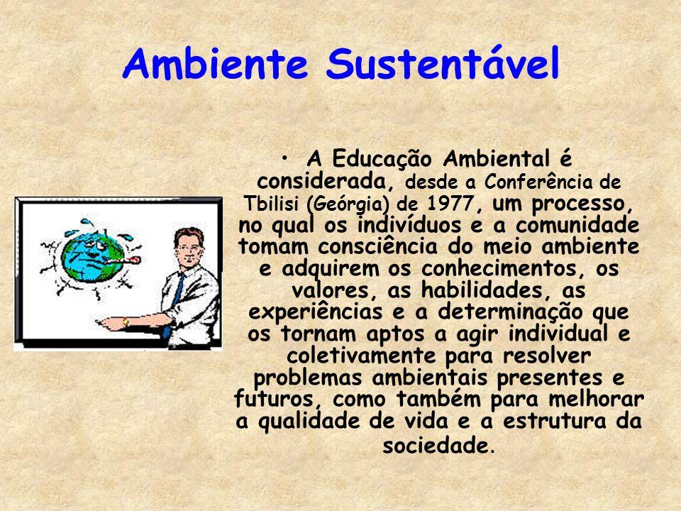 Ambiente Sustentável A Educação Ambiental é considerada, desde a Conferência de Tbilisi (Geórgia) de 1977, um processo, no qual os indivíduos e a comu