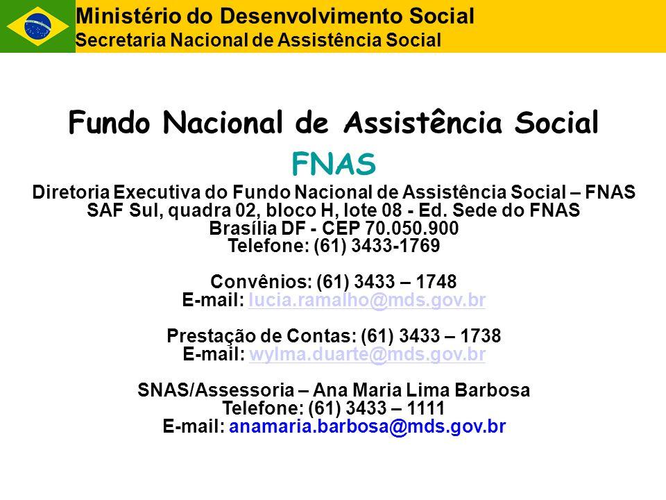 Ministério do Desenvolvimento Social Secretaria Nacional de Assistência Social Fundo Nacional de Assistência Social FNAS Diretoria Executiva do Fundo