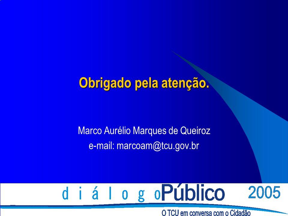 Obrigado pela atenção. Marco Aurélio Marques de Queiroz e-mail: marcoam@tcu.gov.br