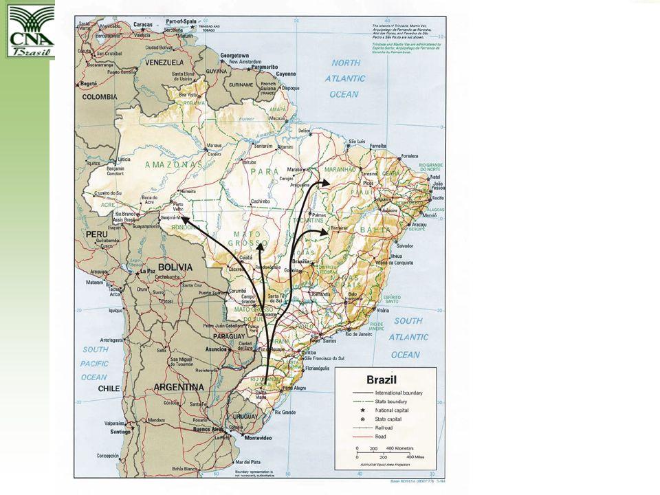 BRASIL EXPORTAÇÕES DO AGRONEGÓCIO SOJA (em mil t)