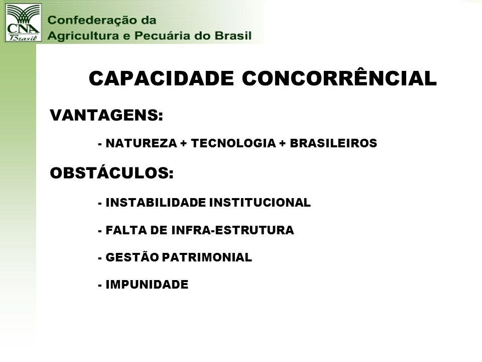 CAPACIDADE CONCORRÊNCIAL VANTAGENS: - NATUREZA + TECNOLOGIA + BRASILEIROS OBSTÁCULOS: - INSTABILIDADE INSTITUCIONAL - FALTA DE INFRA-ESTRUTURA - GESTÃO PATRIMONIAL - IMPUNIDADE