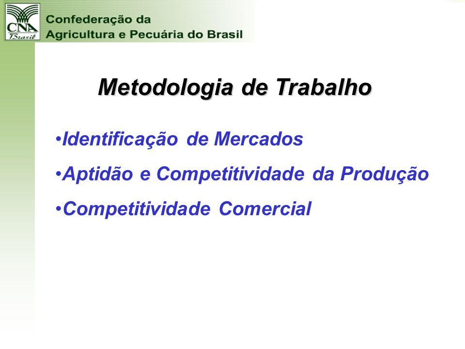 2006 2006 BRASIL - OPORTUNIDADES DO AGRONEGÓCIO - PROBLEMAS COM IMPLANTAÇÃO E GESTÃO DA INFRA-ESTRUTURA DE TRANSPORTES DE CARGAS GESTÃO DA INFRA-ESTRU