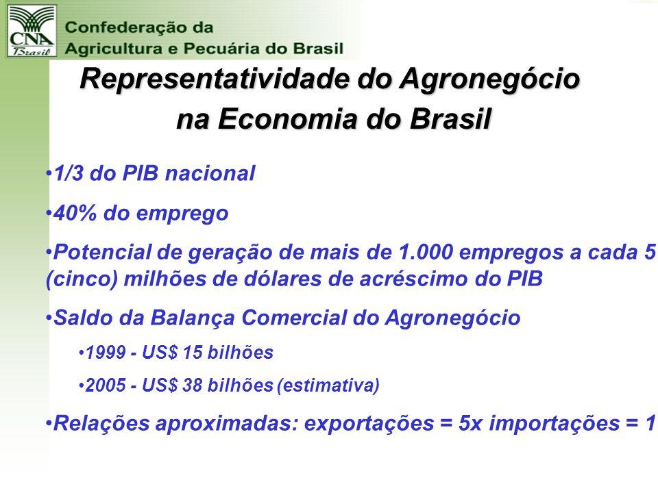 Efeitos Multiplicadores e Empregos na Agropecuária Aumento de Produção de R$ 15 Milhões a preços de 2003 EMPREGO INDIRETOS 186 EMPREGOS EFEITO RENDA 3