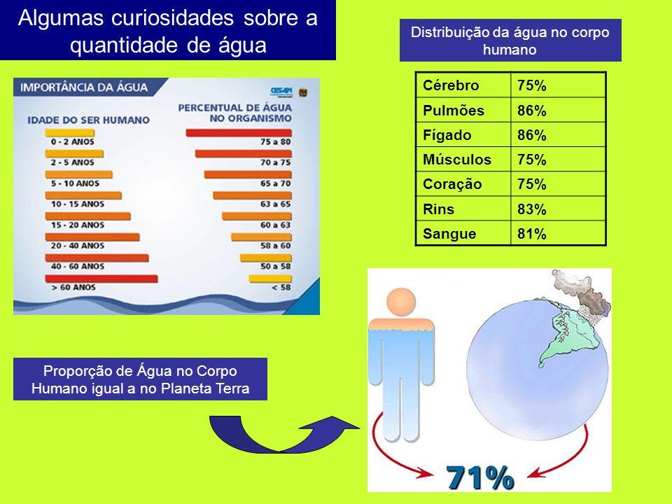 Proporção de Água no Corpo Humano igual a no Planeta Terra Distribuição da água no corpo humano Algumas curiosidades sobre a quantidade de água Cérebr