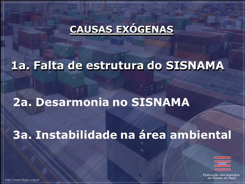 CAUSAS EXÓGENAS 1a.Falta de estrutura do SISNAMA CAUSAS EXÓGENAS 1a.